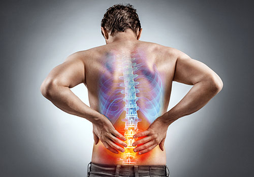 Animated spine shown on man's back